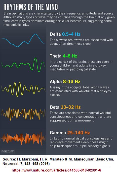 brain wave hertz allocations