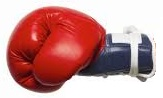 Boxing glove (6K)