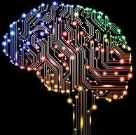 google brain (22K)