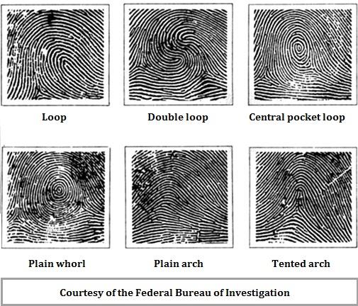 fingerprints (131K)