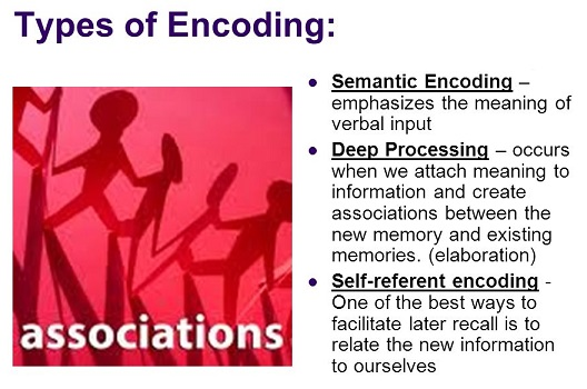 Three types of memory encoding
