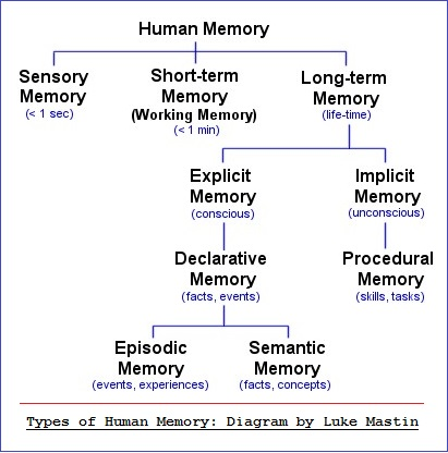 Types of memory with enumeration and examples