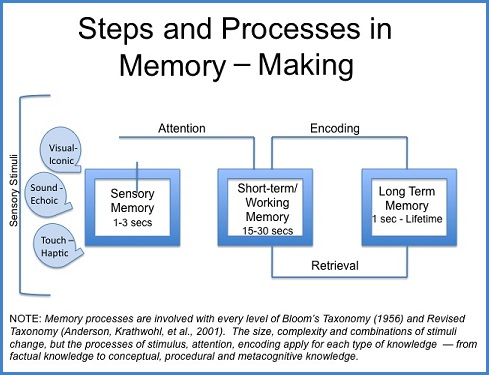 Steps and processes in making a memory