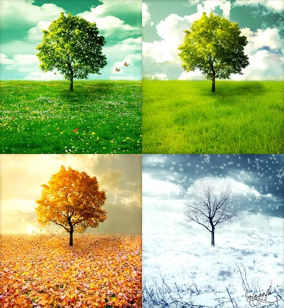 Seasons set into a square configuration