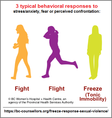 3 typical behavioral responses to stressful situations