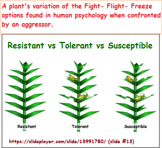 3 positional reactions of plants to aggressors