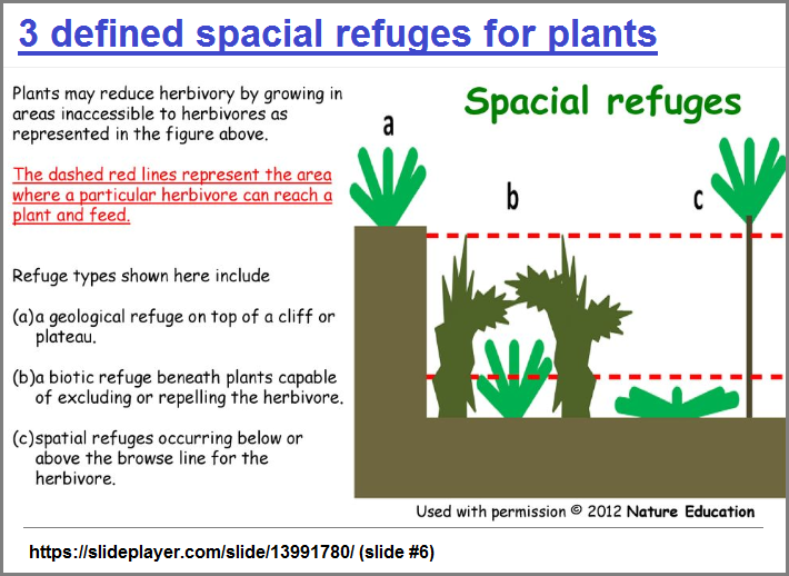 3 defined spatial refuges for plants