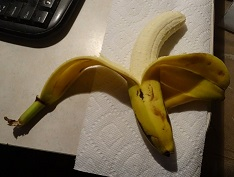 Banana with two peels image 1