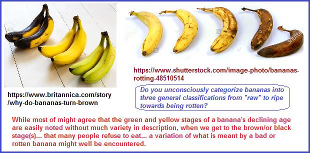 3 general banana variations