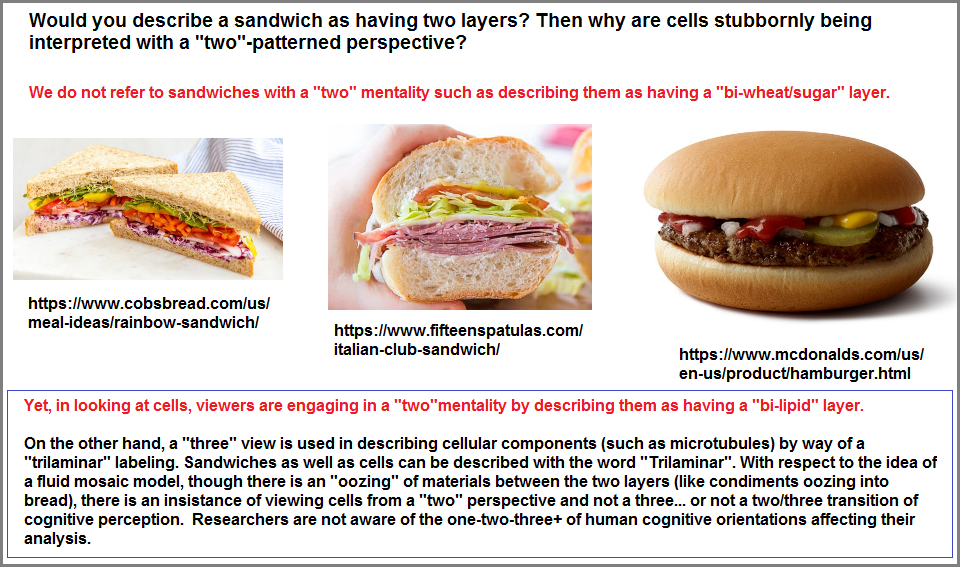 3 different types of Sandwiches
