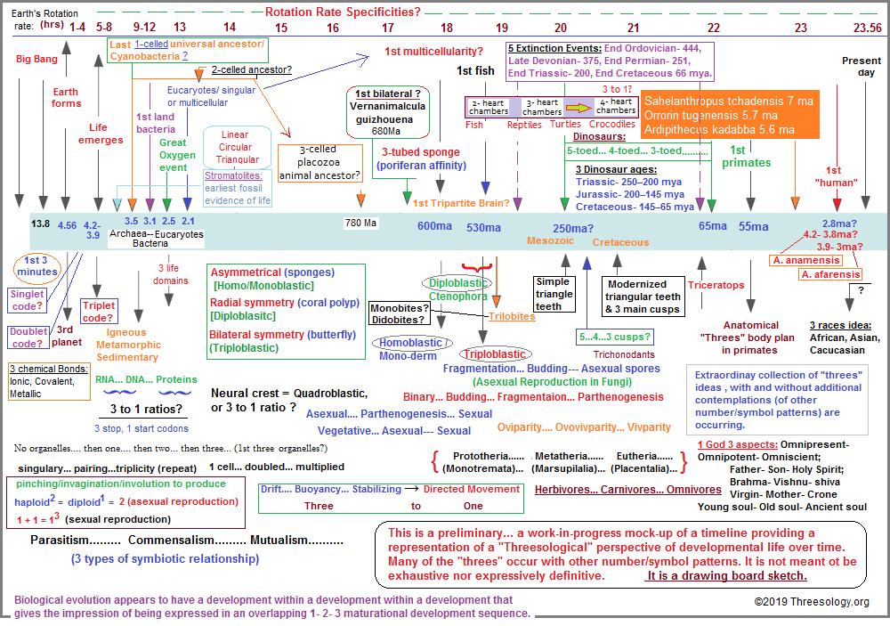 Preliminary Timeline