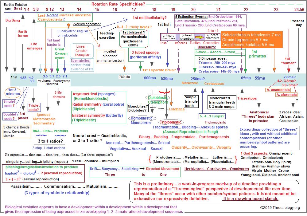 Prelimnary timeline