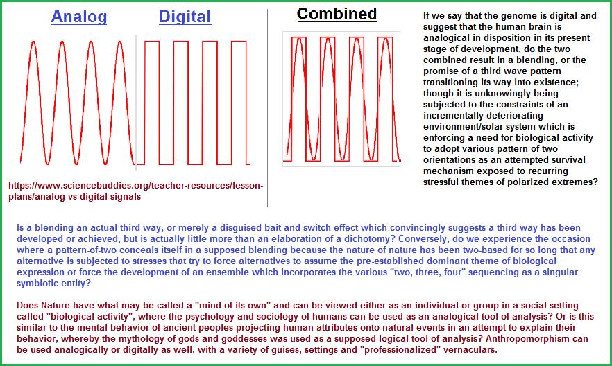The analog, the digital, the amalgamtion