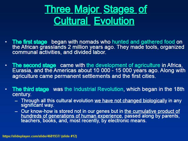 3 stages of Cultural Evolution