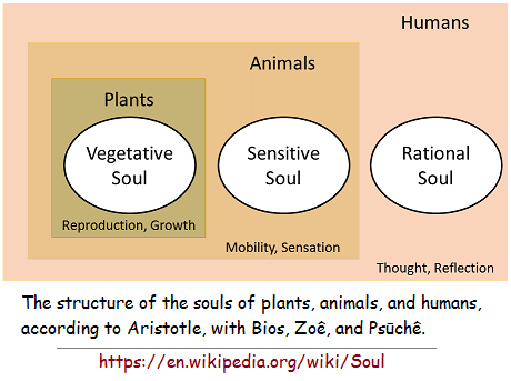 3 types of souls