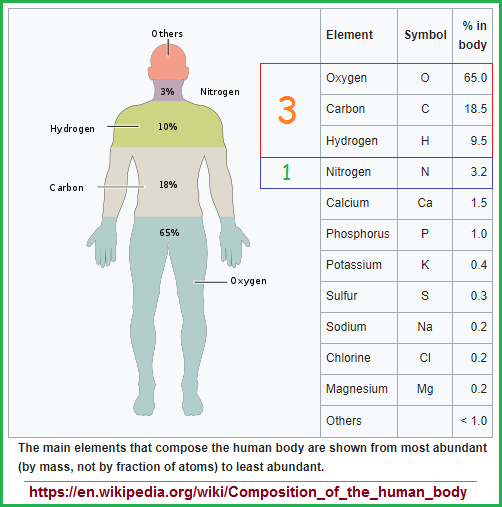 percentage of elements in human body