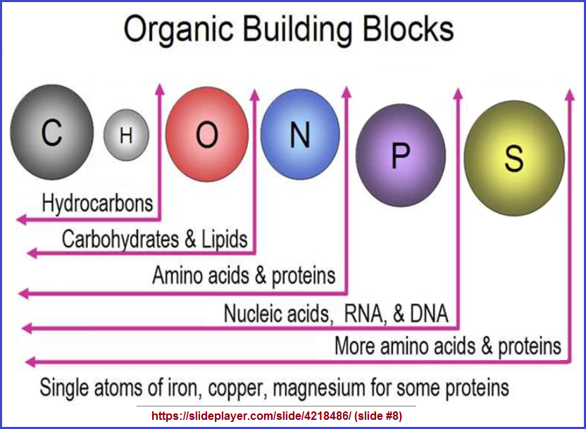 Elements as organic building blocks
