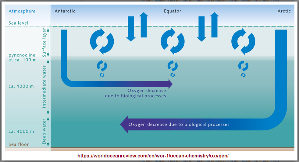 Depth of oxygen in the oceans