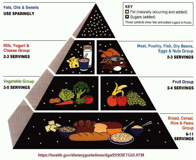 US government dietary pyramid