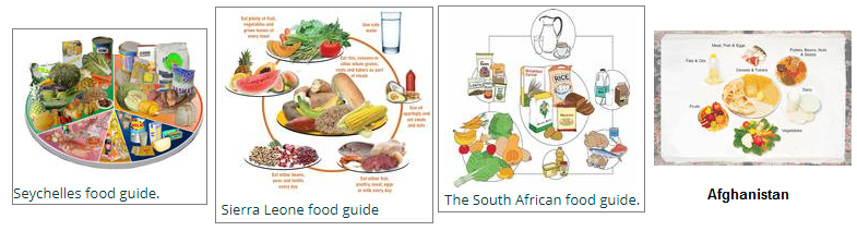 Food guides image 2