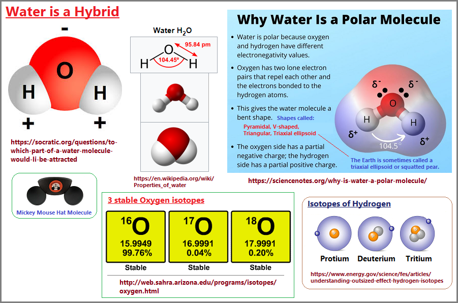 Water is a hybrid