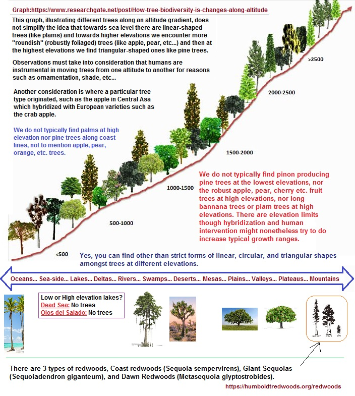 correlating 3 basid geometric forms of trees with altitude