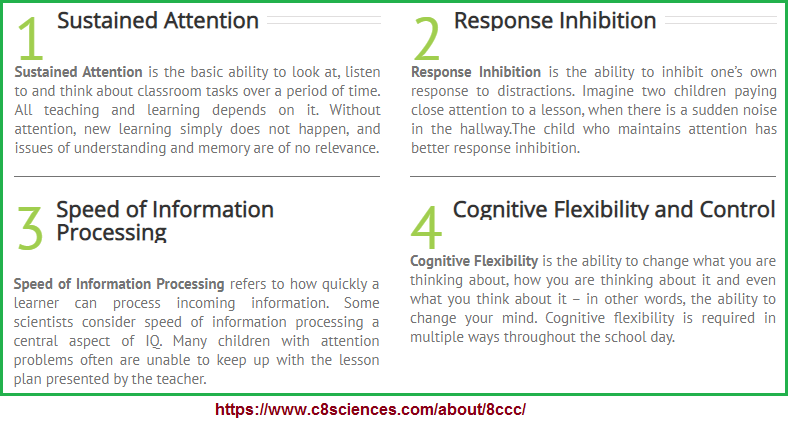 1st four examples of the 8 cognitive core capacities