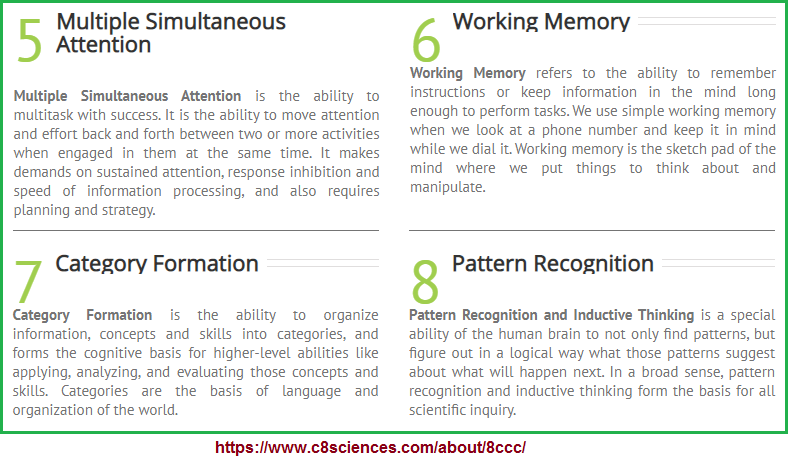 2nd four examples of the 8 cognitive core capacities