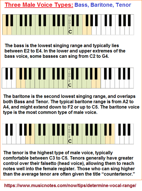 Male voice types