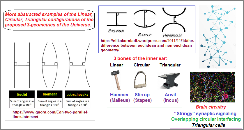 Different perspective of the three geometries of the Universe