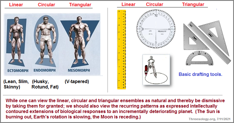 Examples of the linear, circular, triangular congnitive standard