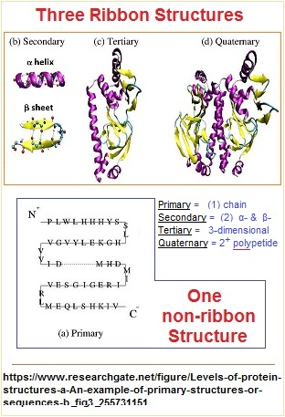 Three to One ribbon model of protein structure image 2