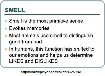 The primitive sense of smell
