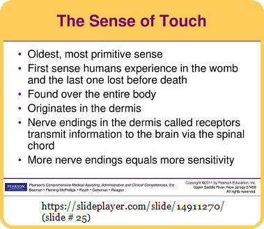 The primitive sense of Touch