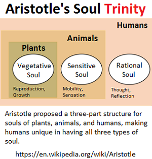 Aristotlle's Trinity of the Soul