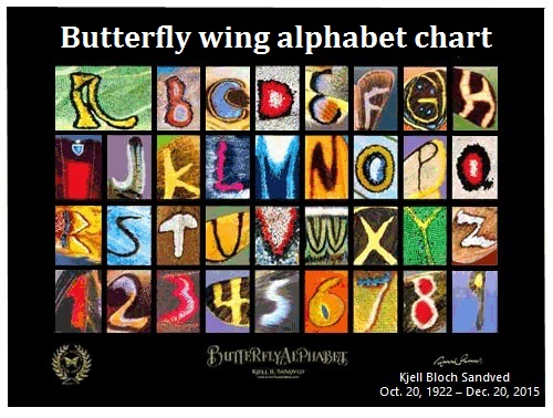 The butterfly wing alphabet chart