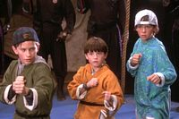 The Three Ninjas