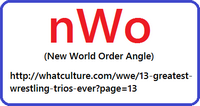 New World Order (Wrestling) Angle