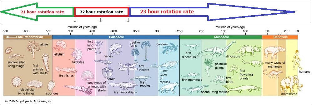cambrian period (130K)