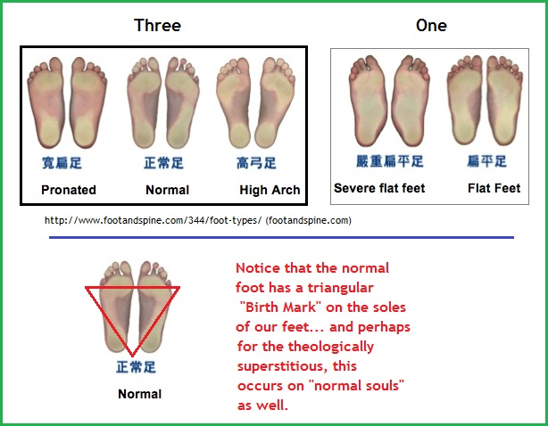 feet types image 1(88K)