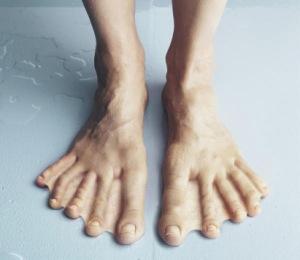 Webbed feet image 1