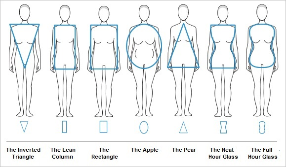 Body shape chart 1