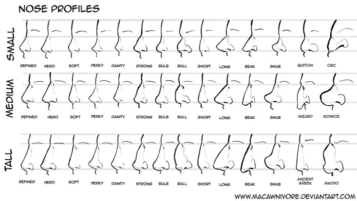 Profiles of noses