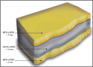 sandwich layers of the cell membrane complex
