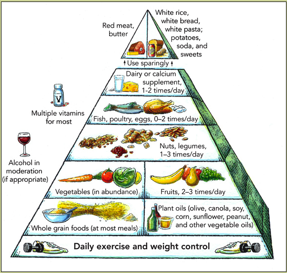 Food pyramid 1 (344K)