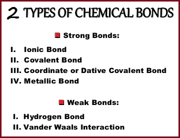 Bond types set in a dichotomous arrangement