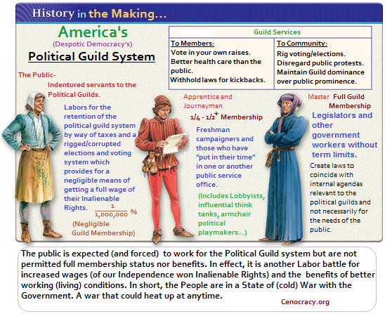 America's Political Guild System